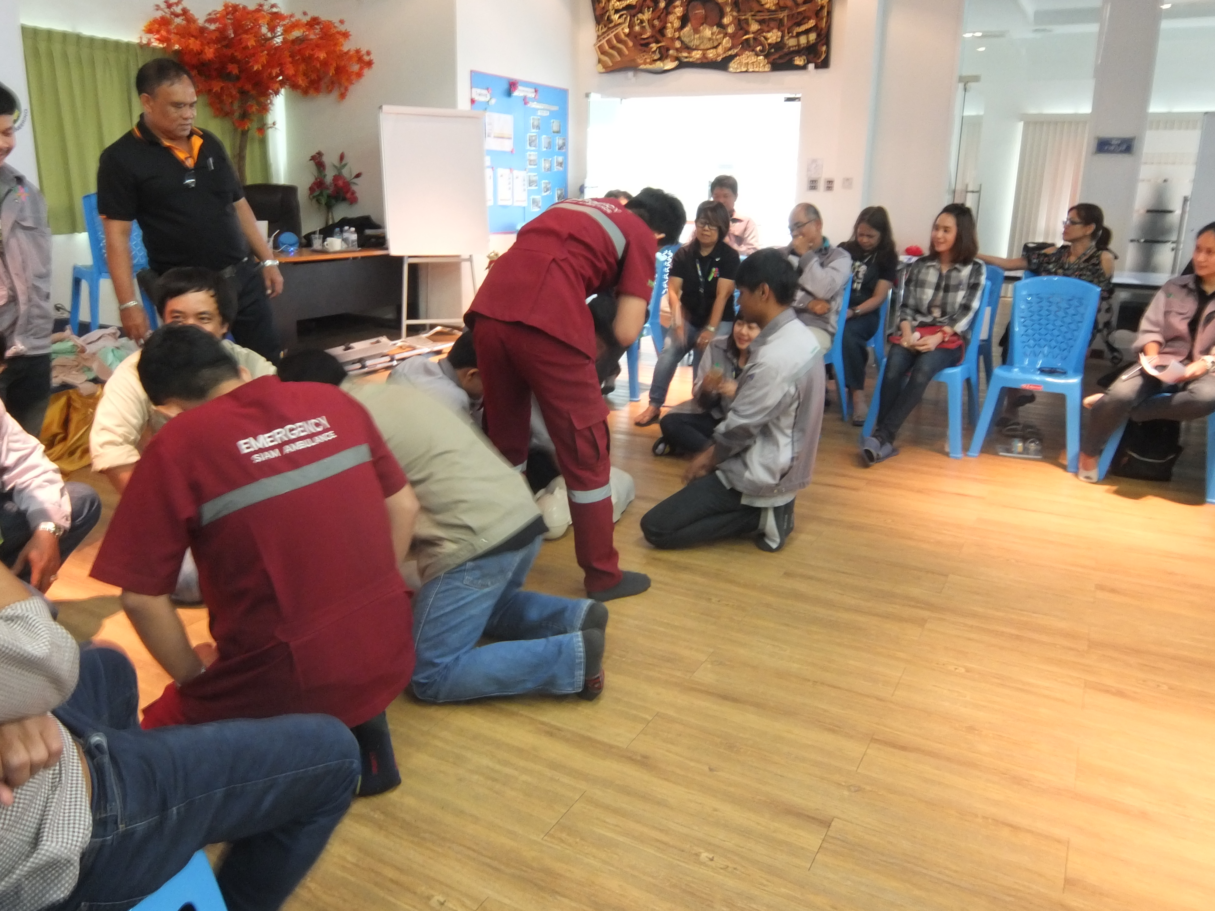 SDE - Training CPR